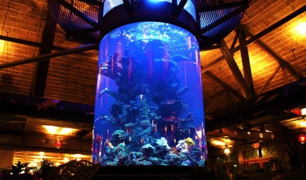 Dramatic aquariums for public spaces are a specialty of Acrylic Tank Manufacturing. (Business Press file photo)