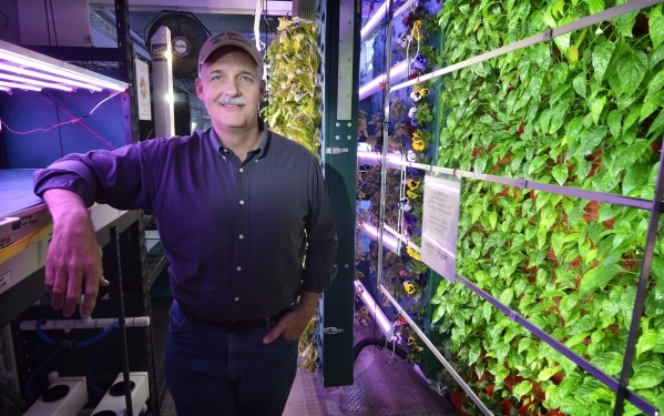 David Martin, principal with Indoor Farms of America, stands in one of the companyþÄôs portable aeroponic farms at 4020 Ali Baba Lane in Las Vegas on Monday, Nov. 30, 2015. Aeroponics use ...