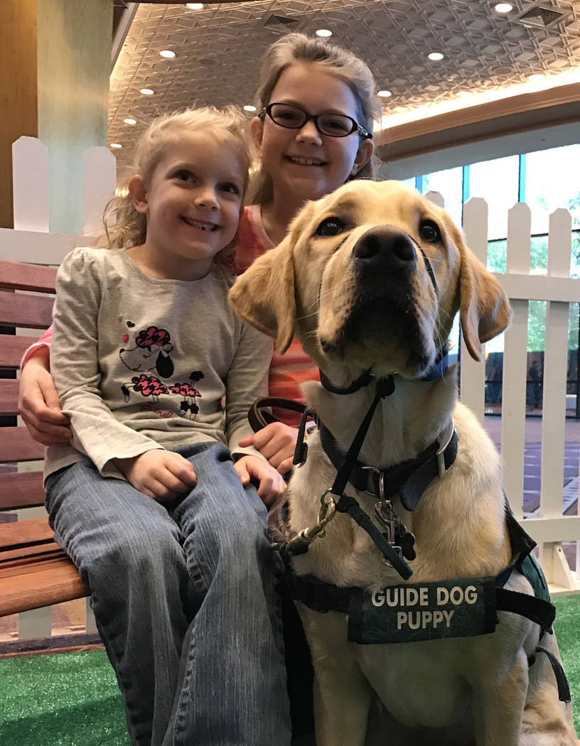 Sisters Emilia Higgs, 6, left, and Lillyan Higgs, 10, sit with their service dog trainee Spark, 1, at the Guide Dogs for the Blind booth at the MGM Grand March 1. (Buford Davis/Las Vegas Business  ...