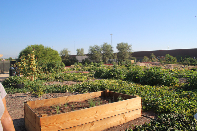 The Extension has access to more than 250 certified master gardeners to help manage the various areas. (Courtesy)