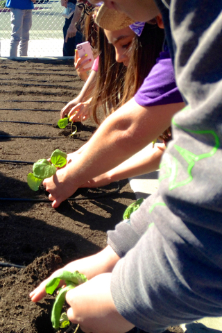 Elementary school children learn to plant a garden through the Create a Change Now  program. (Courtesy)