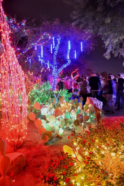One million lights illuminate the Ethel M Chocolates Cactus Garden through Jan. 1. Photo by Buford Davis | Business Press