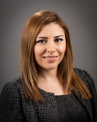 Mina Mohamadian Financial