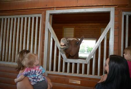 White Horse Youth Ranch will host Equine & Wine from 6:30 - 9 p.m., May 20 at 8390 W. Windmill Lane to benefit the children and horses of the WHY Ranch, as well as introduce guests to the miss ...