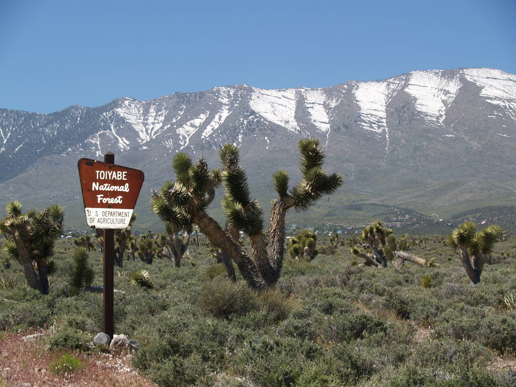 The Cold Creek subdivision has about 200 lots with 87 homes completed. There are five homes for sale, ranging from $359,000 to $650,000. (Mt. Charleston Realty Inc.)
