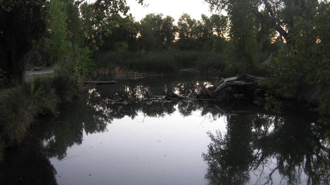The Indian Springs land has ponds. (Las Vegas Land & Water Co.)