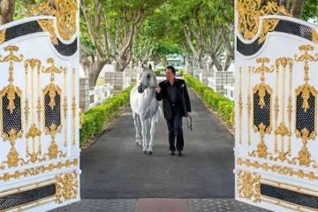 Wayne Newton is shown at the gated entrance of Casa de Shenandoah, which has been sold, along w ...