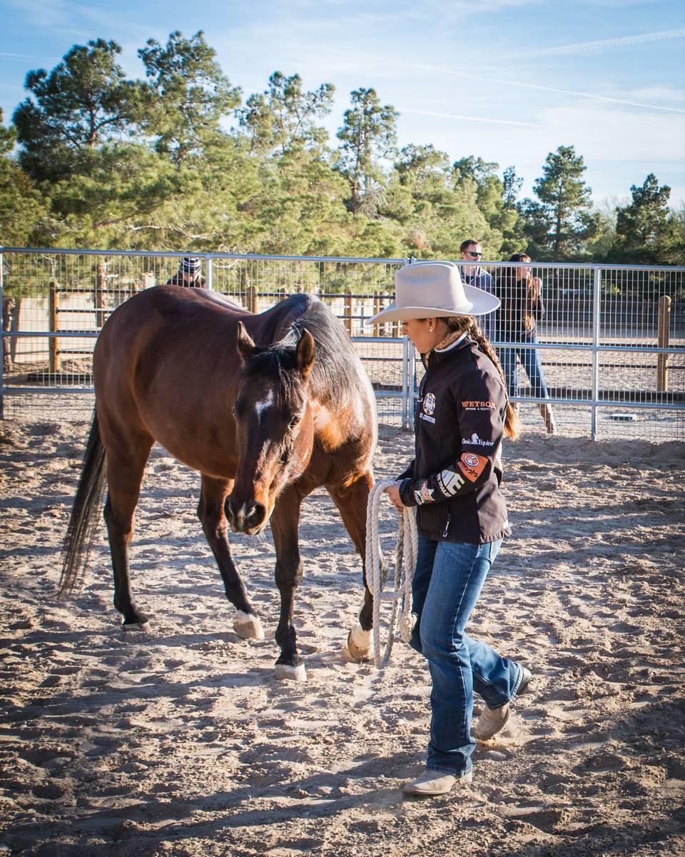 The Horsepower Mastermind program uses equestrian-related activities. (Tonya Harvey/Las Vegas B ...