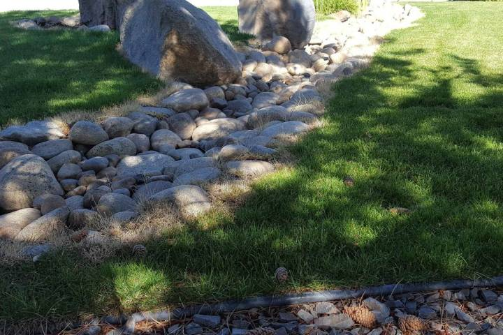 """University of Nevada, Reno Extension is offering """"Watershed-Wise Residential Design"""" Nov. 4 ..."""