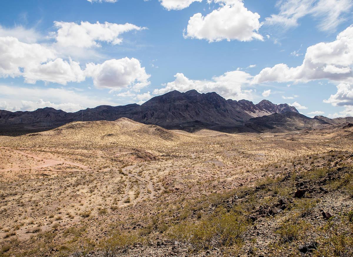 The mountain view. (Tonya Harvey Real Estate Millions)